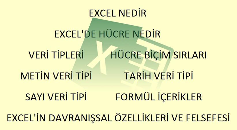 Excelin Yapısal ve Davranışsal Özellikleri